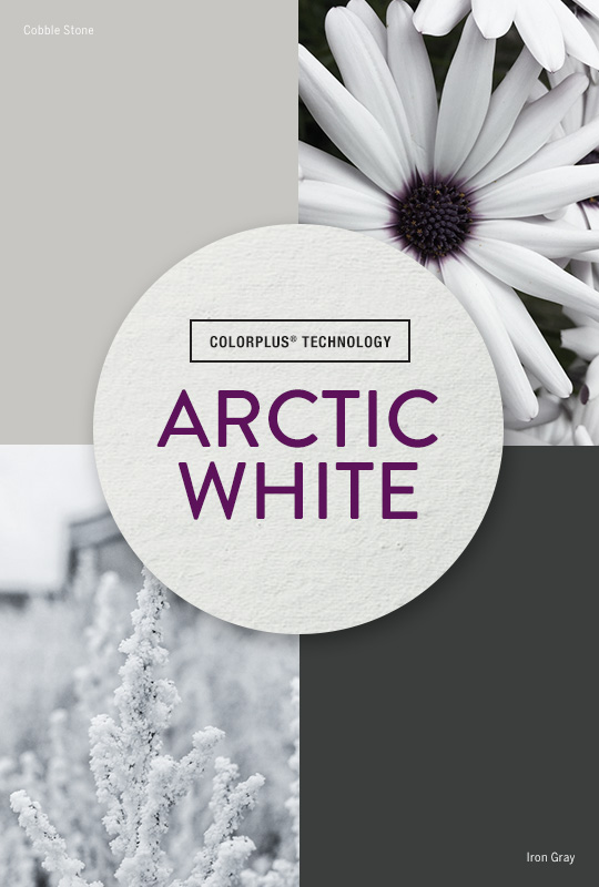 Live Colorfully: Arctic White