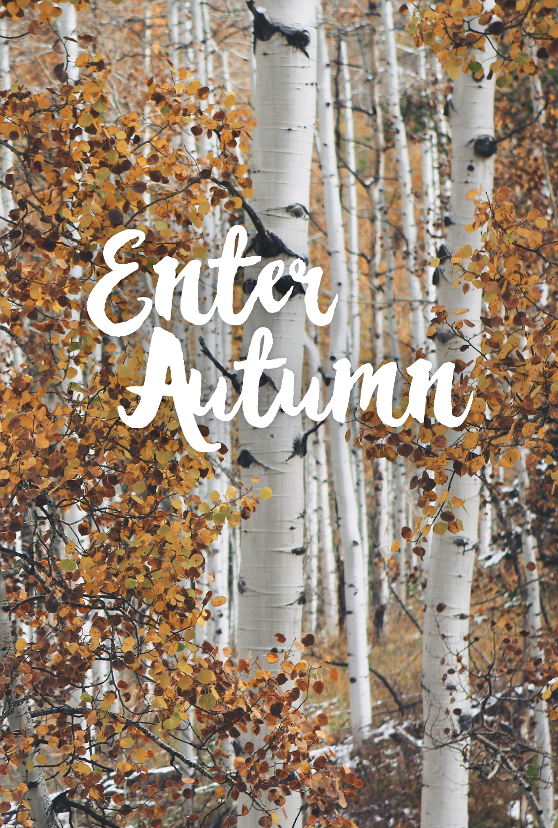 Enter Autumn