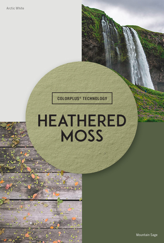 Live Colorfully: Heathered Moss
