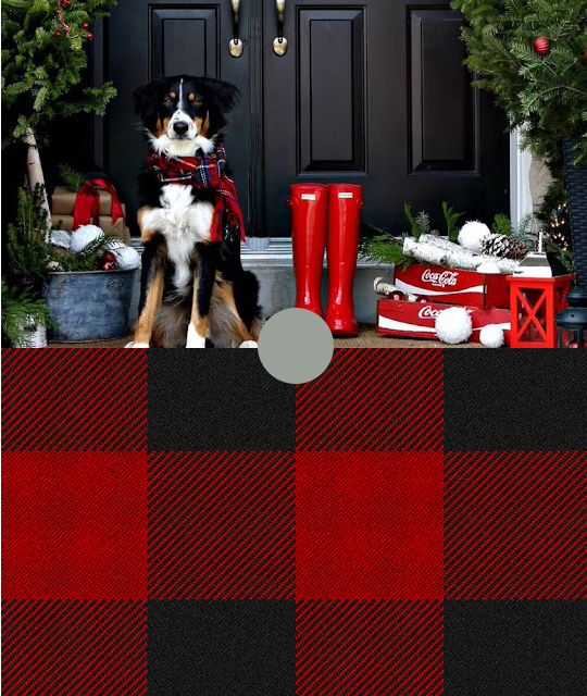 Bernese-Mountain-Dog-Wearing-Red-Plaid-Scarf-With-Red-Rain-Boots-Underneath-Evergreen-Trees