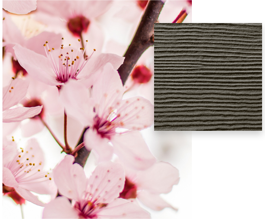 HardiePlank-Timber-Bark-Lap-Siding-Sample-And-Pink-Cherry-Blossoms